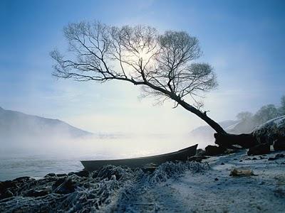 Fisherman's Dream in Winter